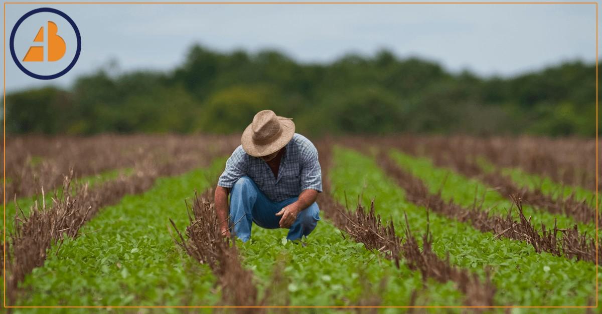 Reforma da Previdência não pode sacrificar produtores rurais, dizem debatedores