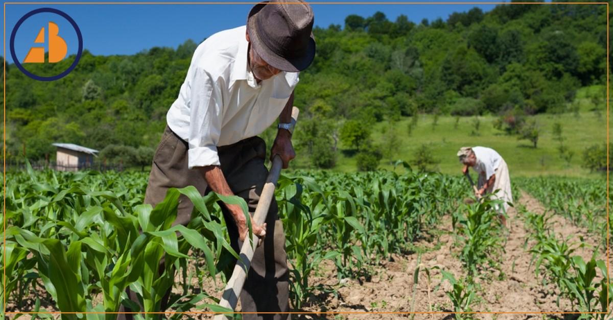 Aposentadoria do Trabalhador Rural: Requisitos, Possibilidades e Impedimentos