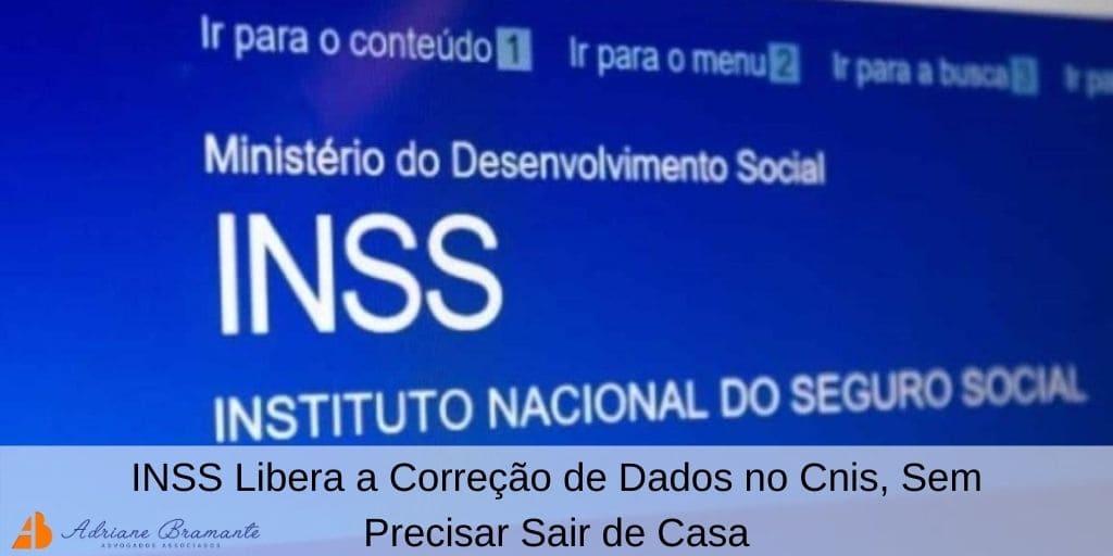 INSS Libera a Correção de Dados no Cnis, Sem Precisar Sair de Casa